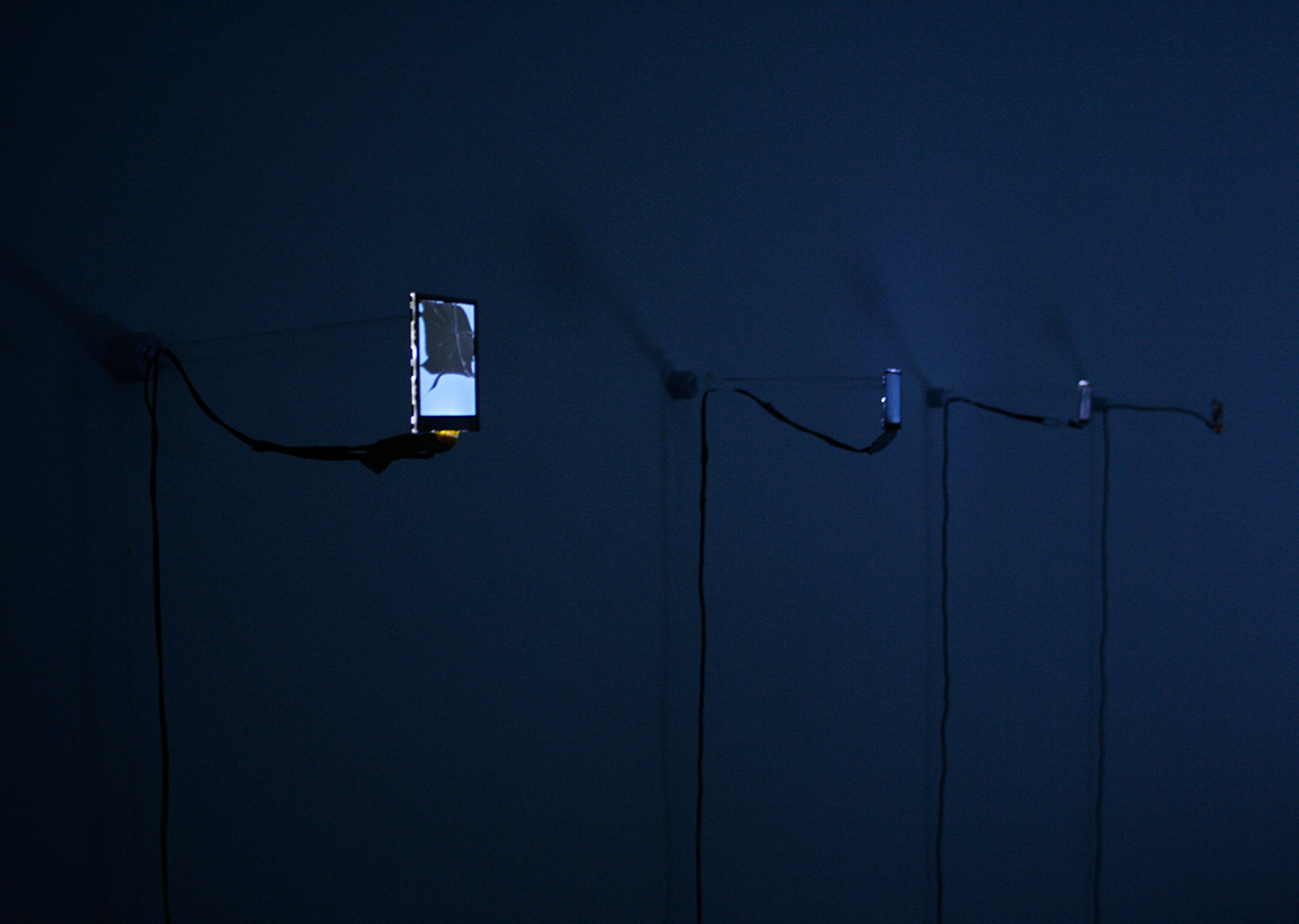 David Blackmore: Installation view Liquid Crystal Displays Pixxelpoint 10, Nova Gorica, SVN