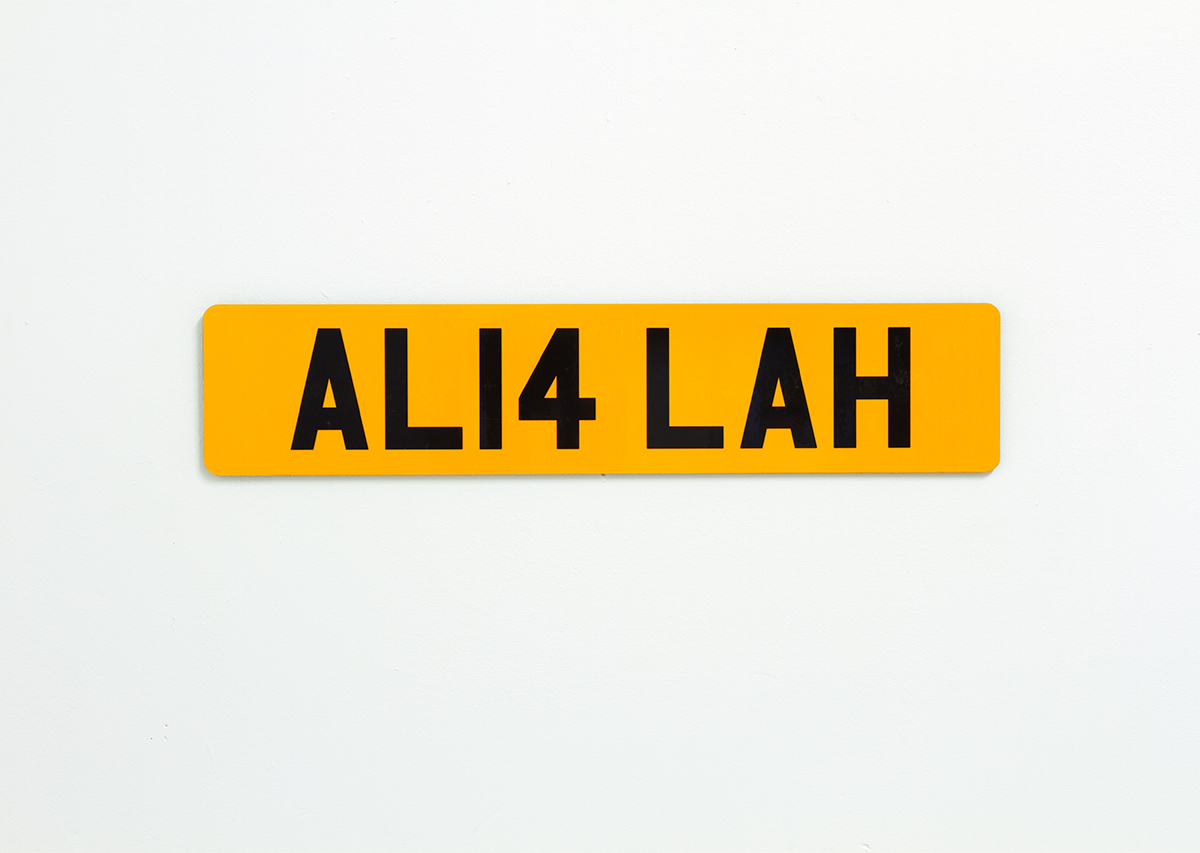 David Blackmore: AL14 LAH from REG, 2013