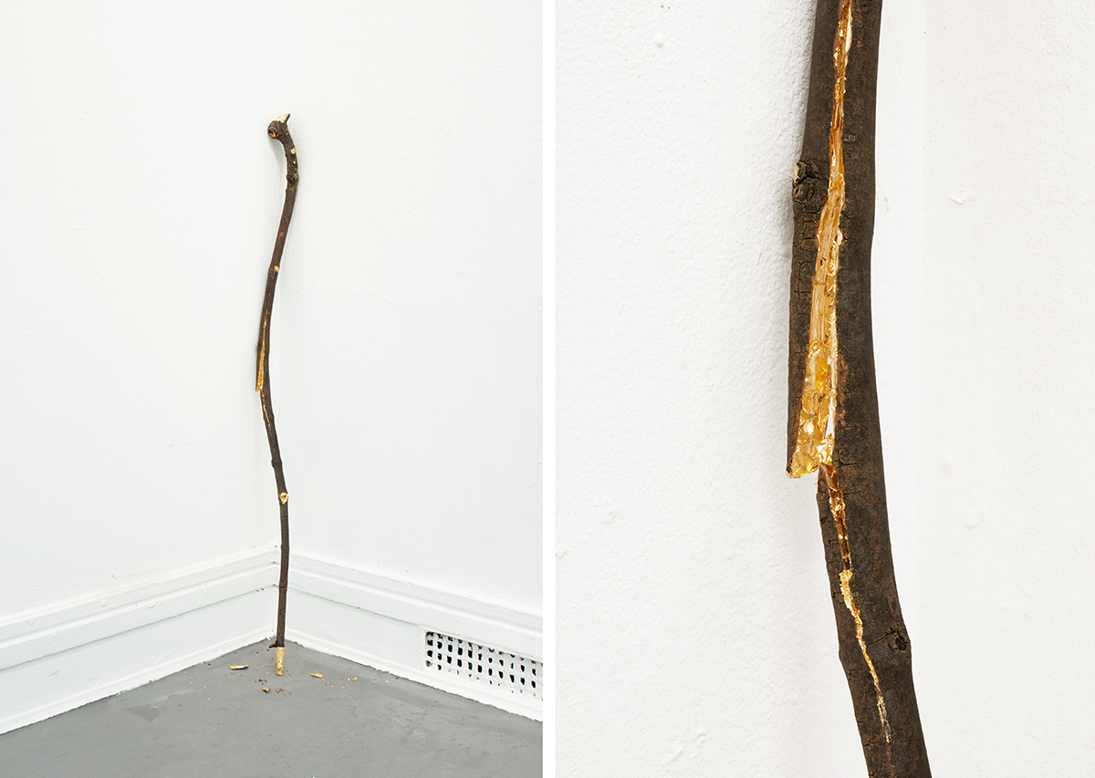 David Blackmore: A stick to beat yourself with, 2015)